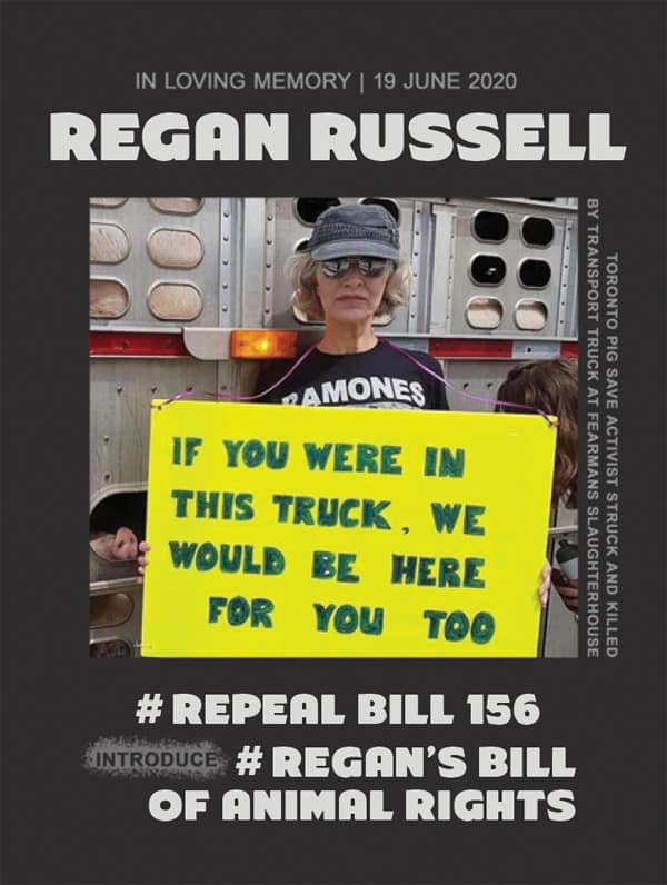 Repeal bill 156 sticker