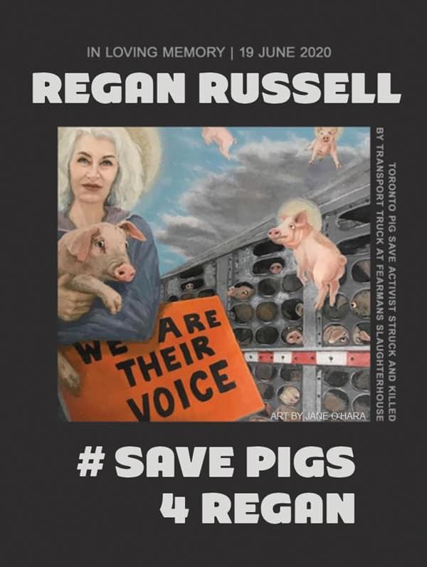 Save pigs for Regan